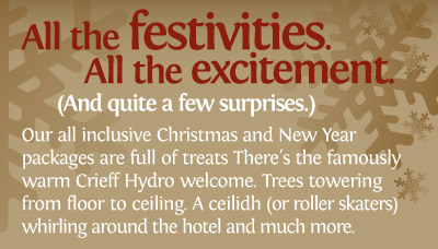 Christmas and New Year packages