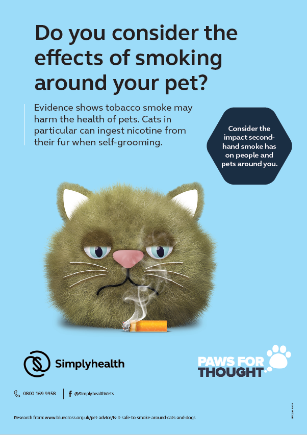 Dental Health Practice Poster Cats