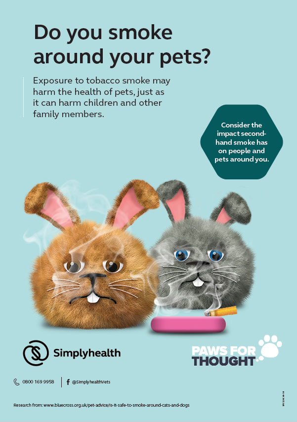 Dental Health Practice Poster Rabbits