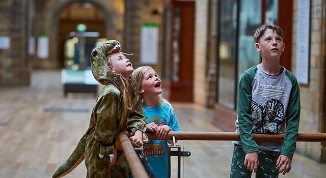 Kids looking at exhibit