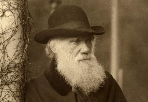 Photograph of Charles Darwin