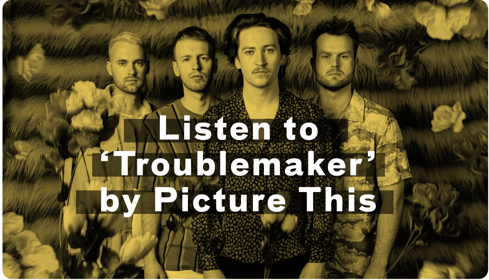 Picture This Troublemaker
