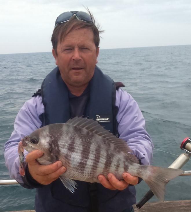 w660_1197573_marineblackbreamboatfishing