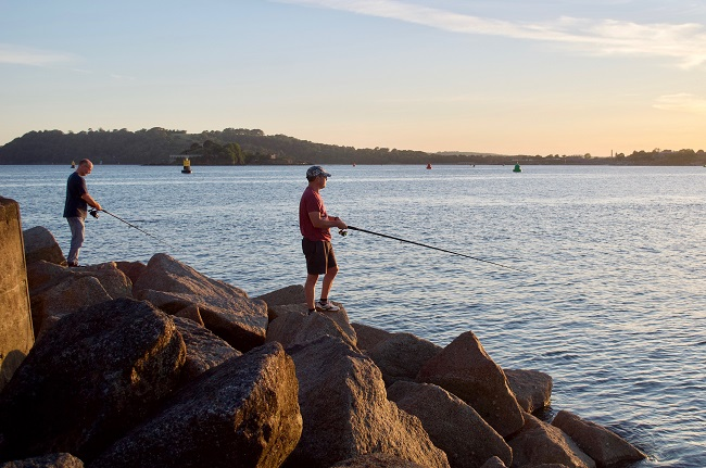 w660_1376299_angling_trust_sea_fishing18