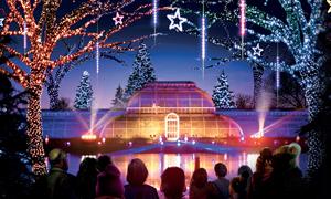 Image of Christmas at Kew
